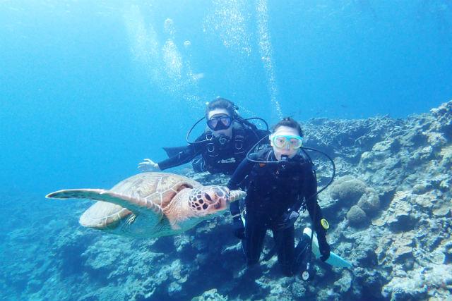 Diving Shop  mahina
