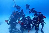 Deeva OCEAN FIELD