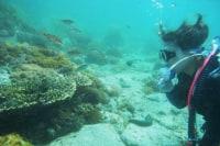 牛深ダイビングサービス