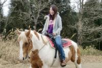 Moon River Horse