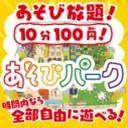 あそびパーク(ザ・ビッグ昭島店)
