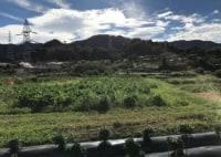 ソラタネ農園 相模原里山農場