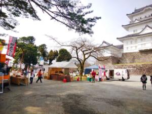 【2019年】小田原城址公園の桜開花状況と混雑・駐車場について