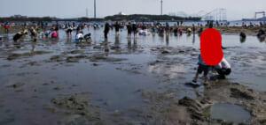 2歳児と海の公園へ潮干狩りに行って来た。駐車場の混雑や持ち物・貝の取れ具合などの記録