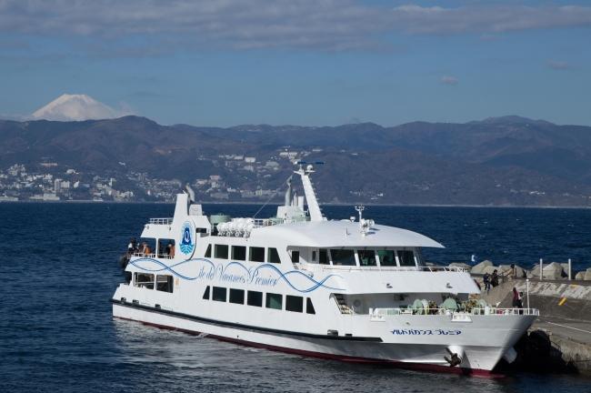 東京から日帰りできる離島、「初島」で海鮮丼を食べ比べ