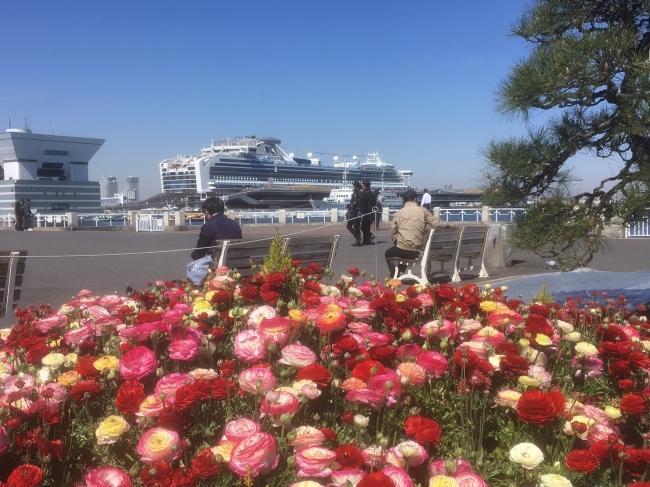 60万本の花が咲き誇る「ガーデンネックレス横浜2019」がいよいよ開催