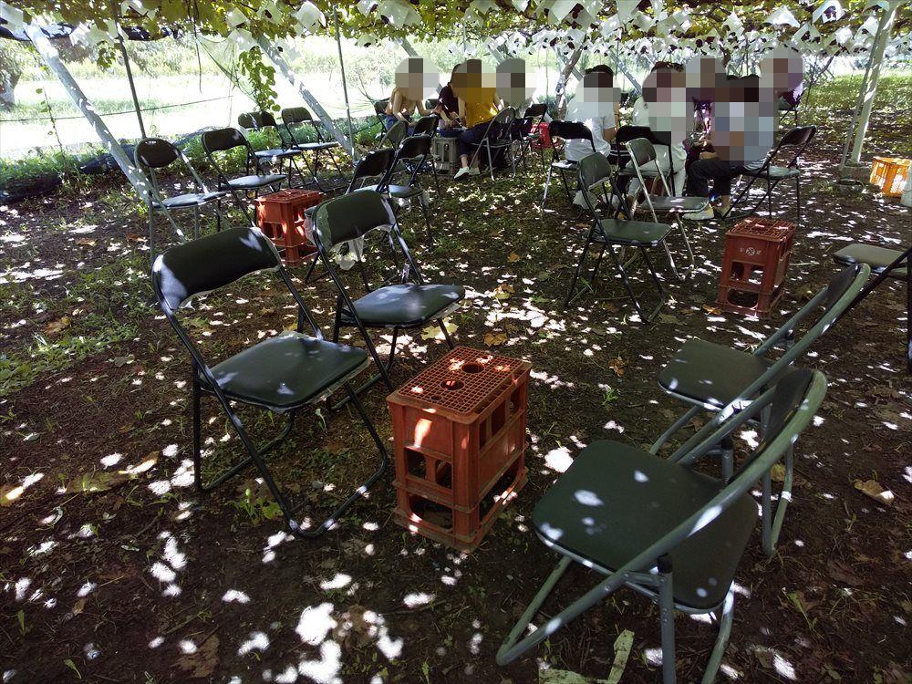 中込農園 椅子が用意されている