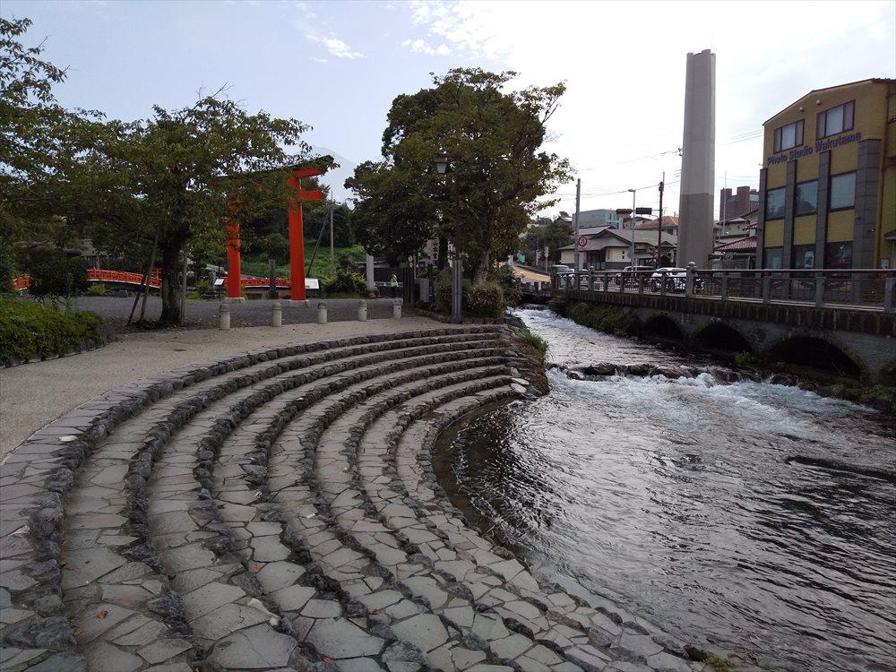 湧玉池から流れて来る水