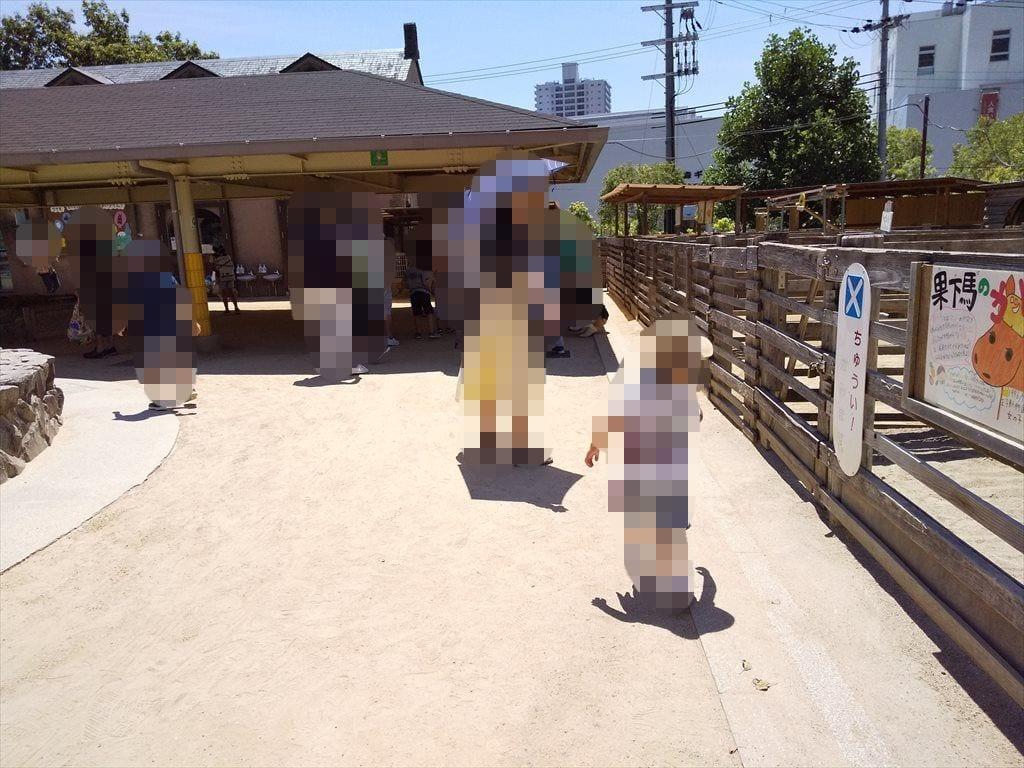 神戸王子動物公園ふれあい動物園