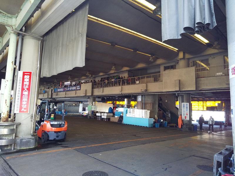 小田原漁港、魚市場食堂